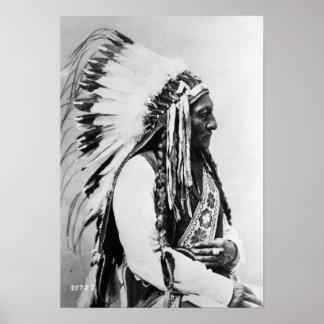 Séance Taureau, un Hunkpapa Sioux Posters