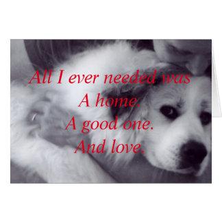 Secourez un animal dans le besoin cartes de vœux