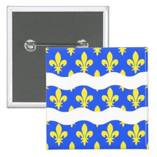 Seine-et-Marne, drapeau de la France Pin's Avec Agrafe