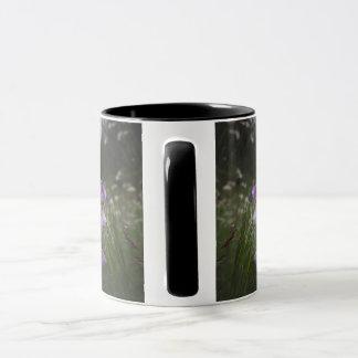 Sélection baltique - Lettonie Mug