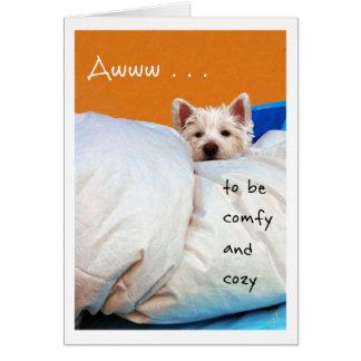 Sensation mieux, confortable et confortable chien cartes