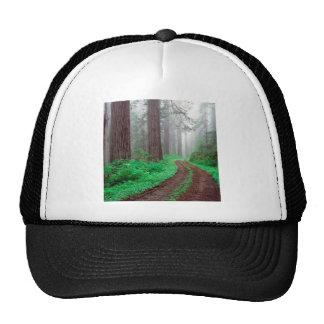 Séquoia de forêt casquettes de camionneur