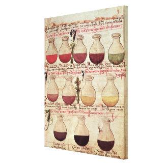 Série de cruches pour l'analyse d'urine toiles