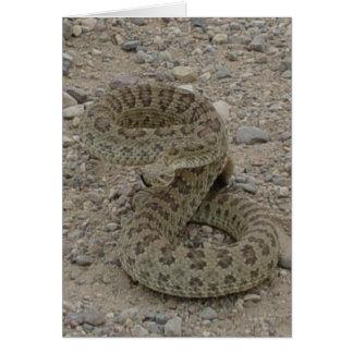 Serpent à sonnettes de prairie R0009 Carte De Vœux