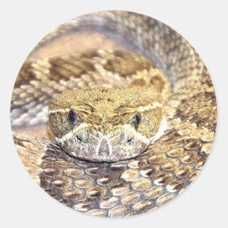 Serpent à sonnettes sticker rond