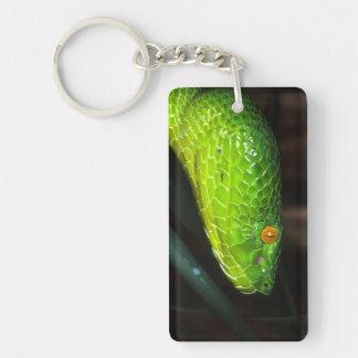 Serpent de vipère de la mine de Stejneger vert Porte-clé Rectangulaire En Acrylique Une Face