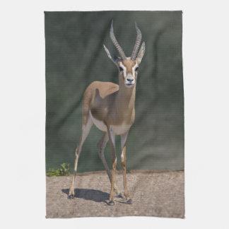 Serviette de cuisine de gazelle de Dorcas