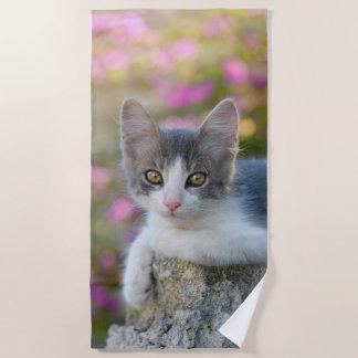 Serviette De Plage Amoureux de les chats pelucheux de photo de petit