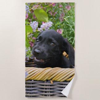 Serviette De Plage Photo noire mignonne d'animal familier de chiot de