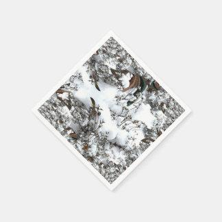 Serviette En Papier Abrégé sur neige
