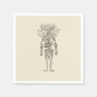 Serviette En Papier Anatomie humaine l'illustration antique d'artères
