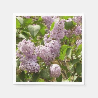Serviette En Papier Belles fleurs pourpres lilas de ressort de Bush