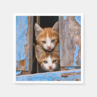 Serviette En Papier Chatons mignons de chat dans une photo vintage