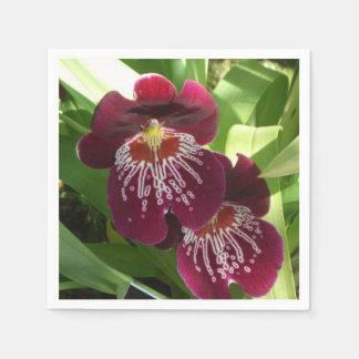 Serviette En Papier Floral élégant des orchidées II marron