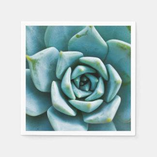 Serviette En Papier Succulent