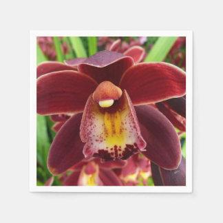Serviette Jetable Beau floral rouge des orchidées I marron