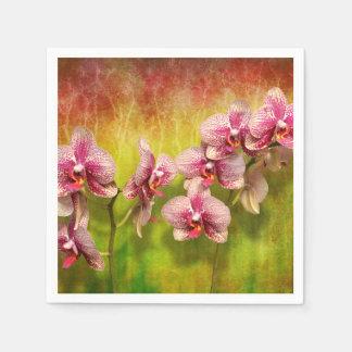 Serviette Jetable Orchidée - Phalaenopsis - simplement un plaisir