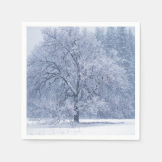 Serviette Jetable Scène congelée par hiver d'arbre de Milou