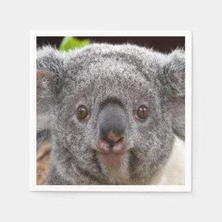 Serviette Jetable Serviettes de koala