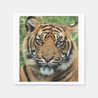 Serviette Jetable Tigre