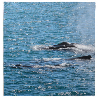 SERVIETTES DE TABLE BALEINES DE BOSSE MACKAY QUEENSLAND AUSTRALIE