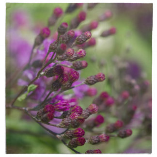 Serviettes De Table Bourgeons géants pourpres de fleur sauvage d'herbe