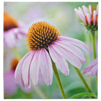 Serviettes De Table Fleur sauvage coloré d'echinacée