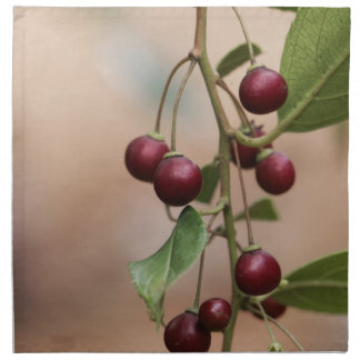 Serviettes De Table Fruits d'un nerprun brillant de feuille