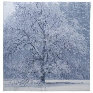 Serviettes De Table Scène congelée par hiver d'arbre de Milou