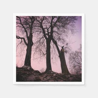 Serviettes En Papier Crépuscule rose et pourpre dans les bois