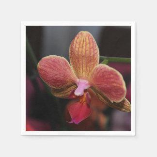 Serviettes en papier Orchidée