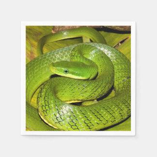 Serviettes En Papier Serpent de rat vert de Bush