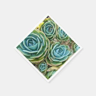 Serviettes En Papier Succulents