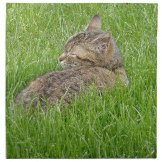 Serviettes En Tissus A Nap in the Grass