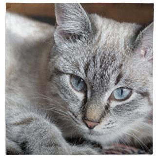 Serviettes En Tissus Animal familier de maquereau de Mieze de chaton de