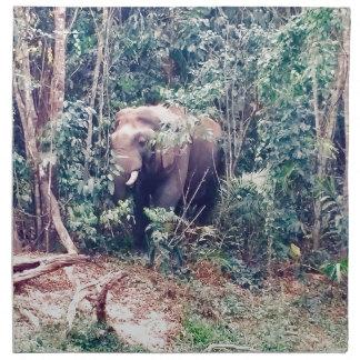 Serviettes En Tissus Éléphant en Thaïlande