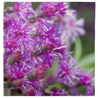 Serviettes En Tissus Fleurs sauvages grands d'herbe de Saint-Jacques