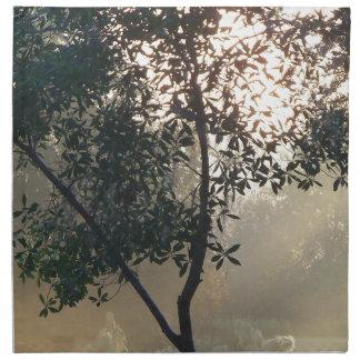 Serviettes En Tissus lever de soleil brumeux de matin