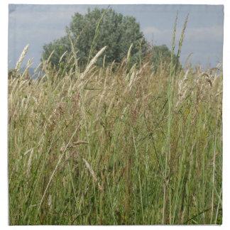 Serviettes En Tissus Paysage d'été de champ sauvage. La Toscane, Italie