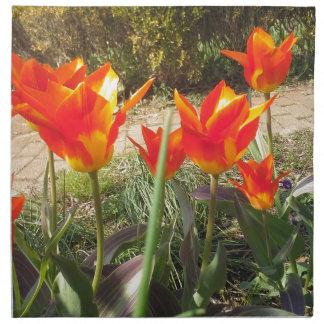 Serviettes En Tissus Tulipes rouges et jaunes