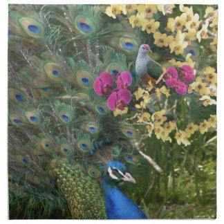 Serviettes En Tissus Un paon et la colombe dans un monde des orchidées