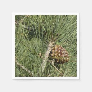 Serviettes Jetables Arbre de la Californie de plan rapproché de pin de