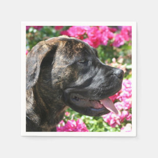 Serviettes Jetables Chiot Brindle de mastiff