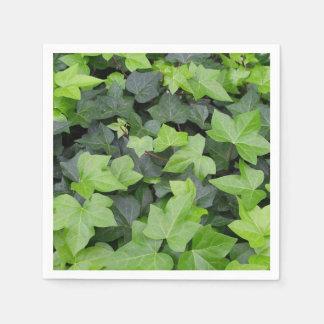 Serviettes Jetables Copie botanique de lierre vert