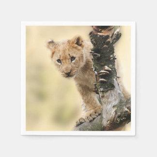 Serviettes Jetables Lion CUB