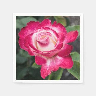 Serviettes Jetables Serviettes de papier de rose rose et blanc