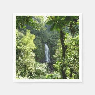 Serviettes Jetables Trafalgar tombe photographie tropicale de forêt