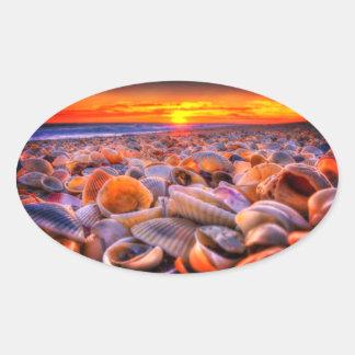 Shell échouent et les autocollants vifs de coucher