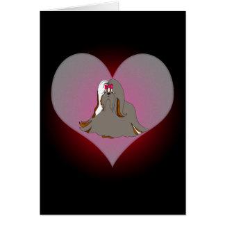 Shih Tzu Sondra ma carte de coeur