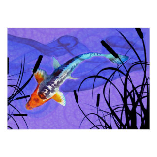 Shusui Koi dans l étang pourpre avec des Cattails Poster